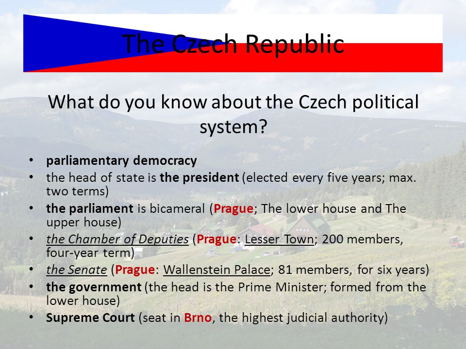 What do you know about the Czech political system