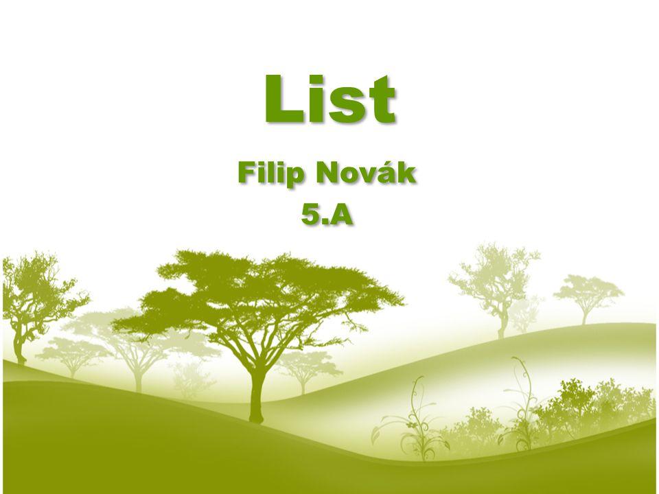 List Filip Novák 5.A