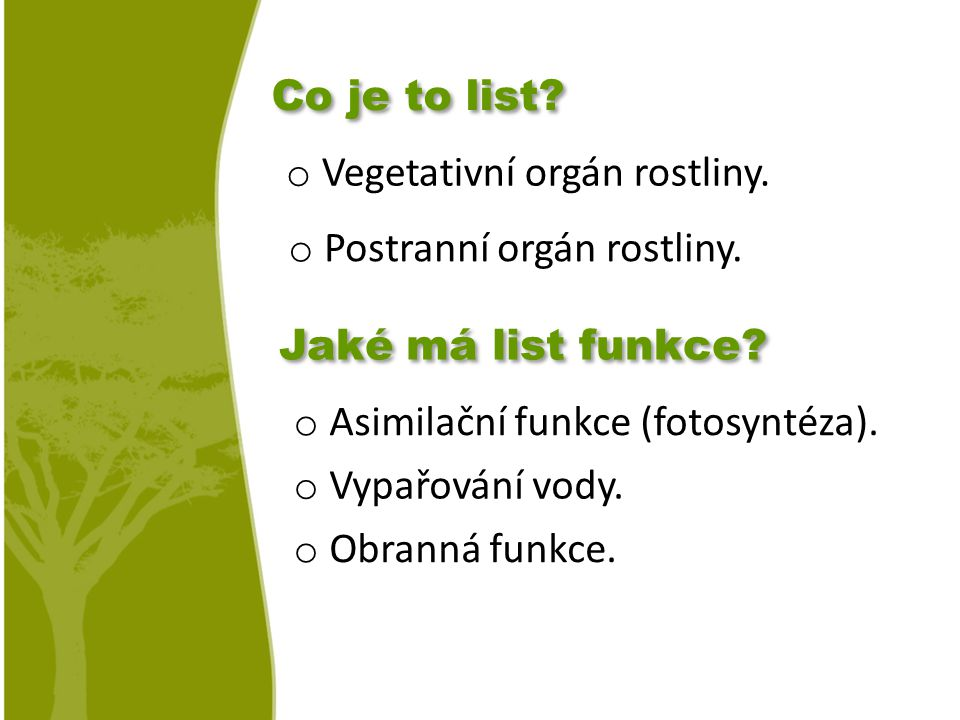 Co je to list Vegetativní orgán rostliny. Postranní orgán rostliny. Jaké má list funkce Asimilační funkce (fotosyntéza).