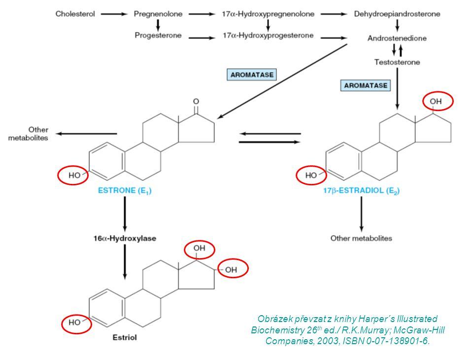 Obrázek převzat z knihy Harper´s Illustrated Biochemistry 26th ed. / R