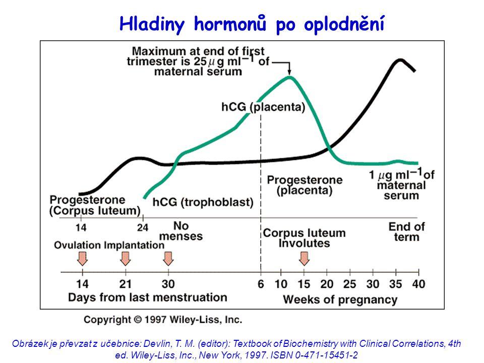 Hladiny hormonů po oplodnění