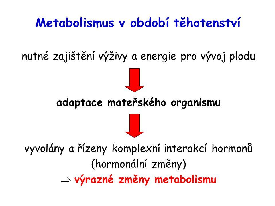 Metabolismus v období těhotenství