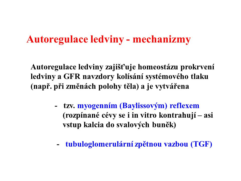 Autoregulace ledviny - mechanizmy