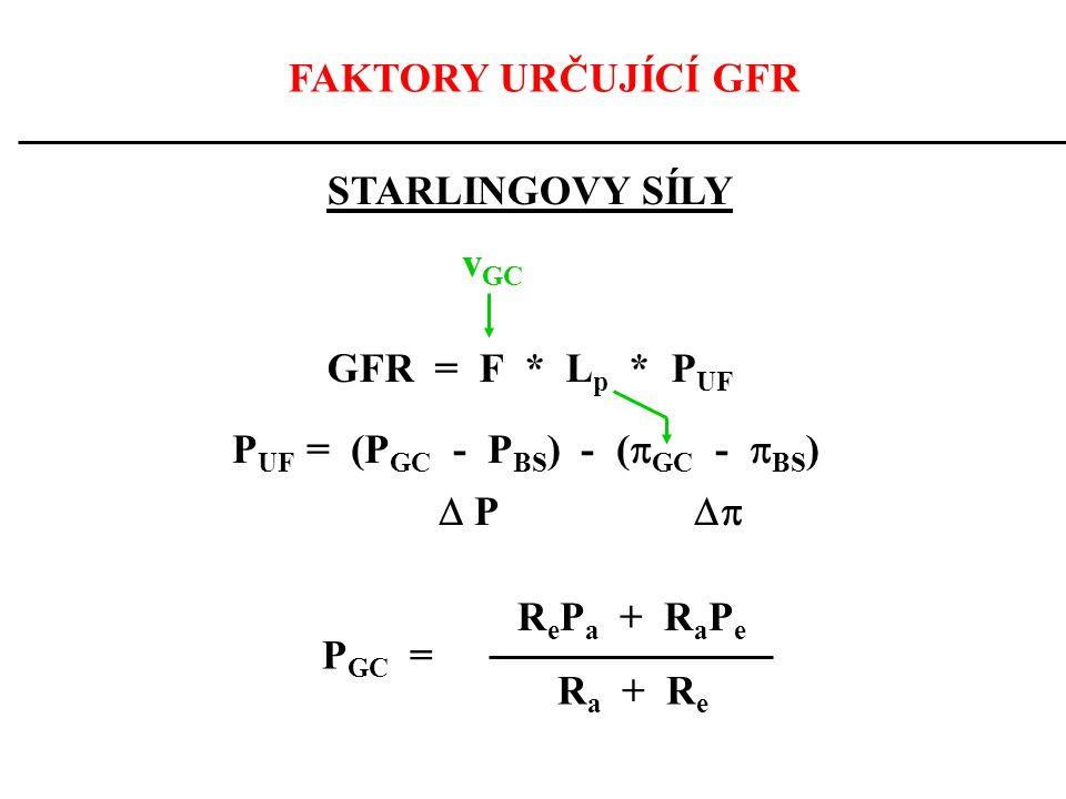 FAKTORY URČUJÍCÍ GFR STARLINGOVY SÍLY. vGC. GFR = F * Lp * PUF. PUF = (PGC - PBS) - (GC - BS)
