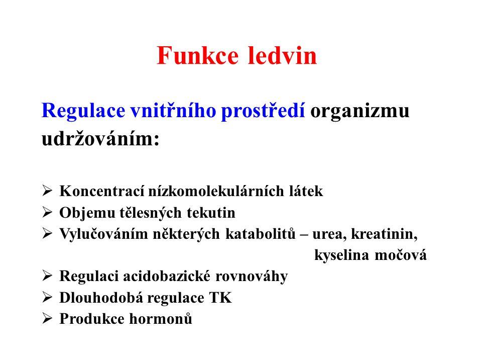 Funkce ledvin Regulace vnitřního prostředí organizmu udržováním:
