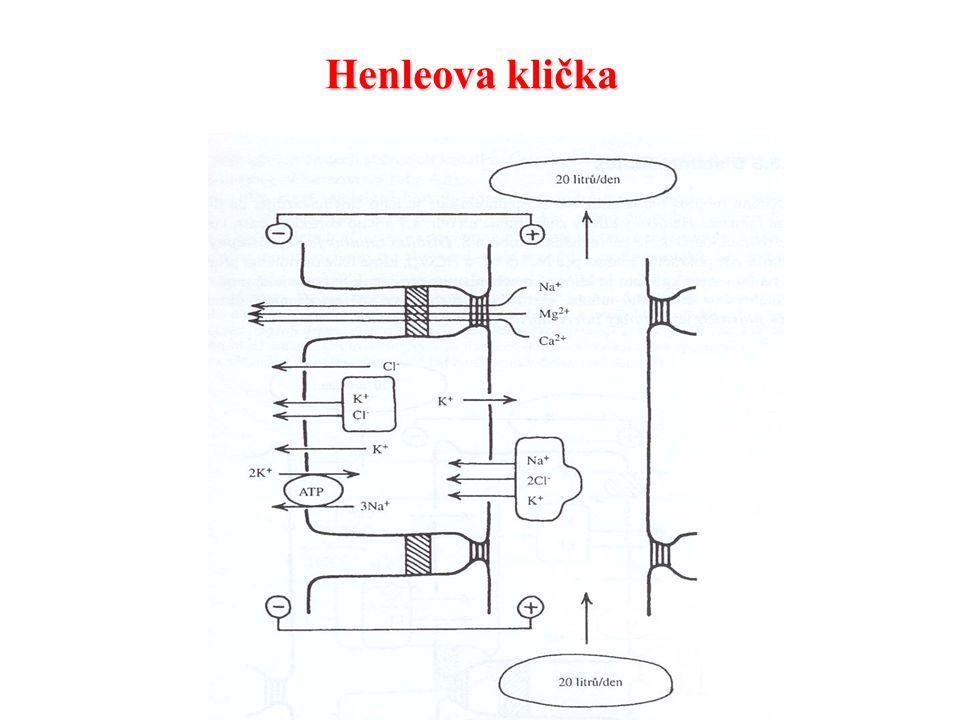 Henleova klička