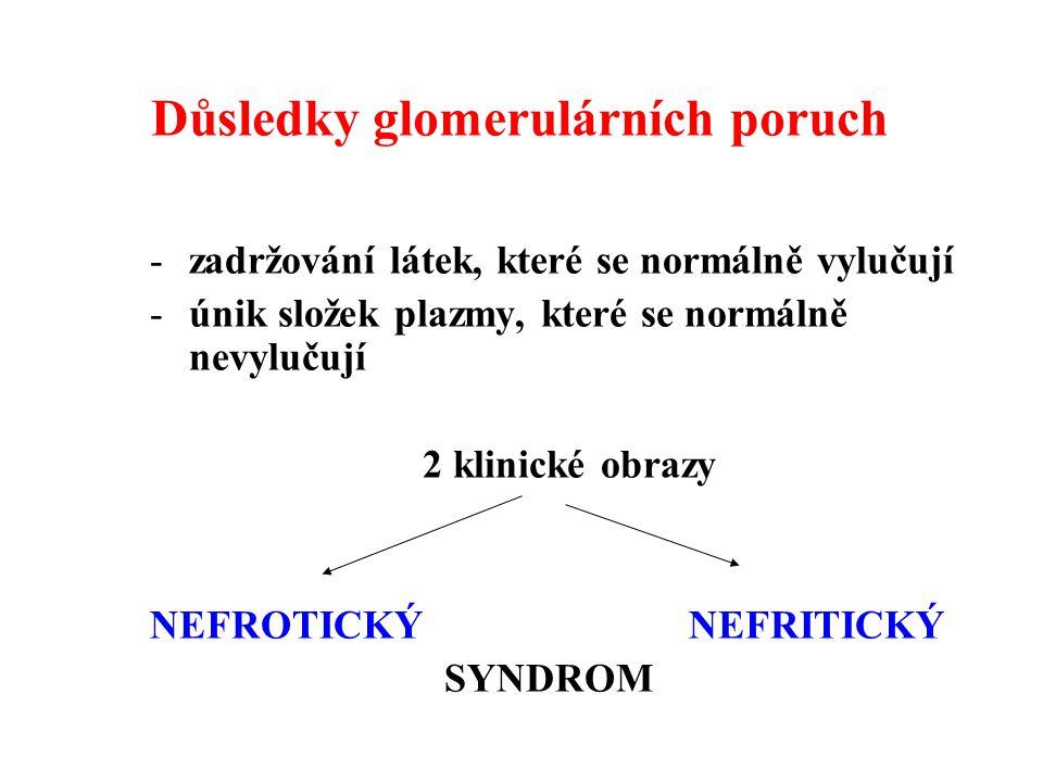 Důsledky glomerulárních poruch