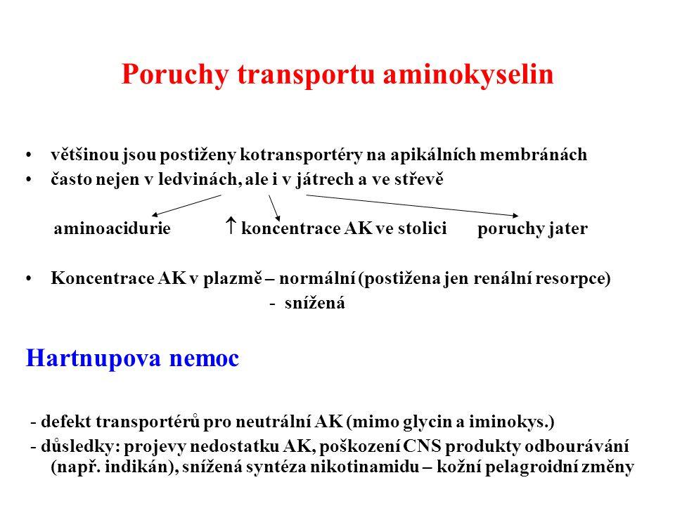 Poruchy transportu aminokyselin