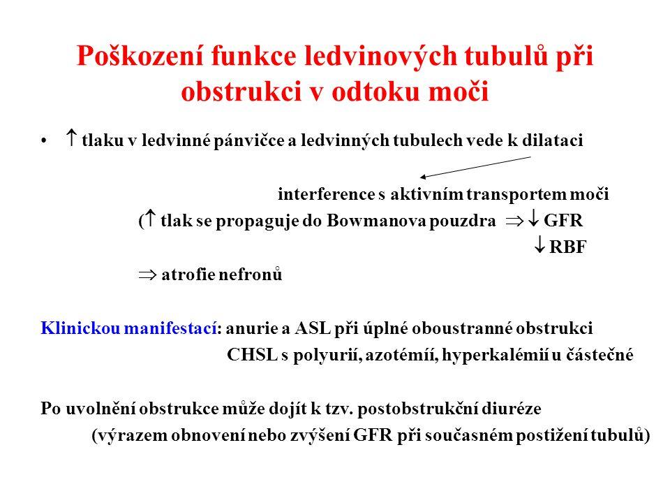 Poškození funkce ledvinových tubulů při obstrukci v odtoku moči