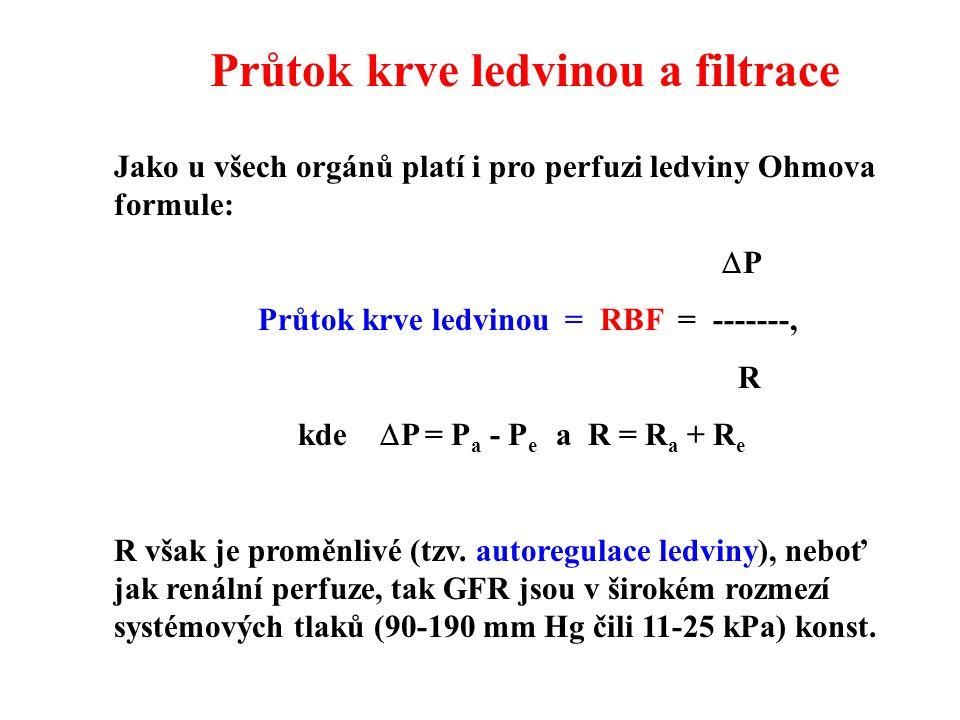 Průtok krve ledvinou a filtrace