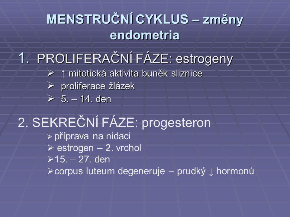 MENSTRUČNÍ CYKLUS – změny endometria