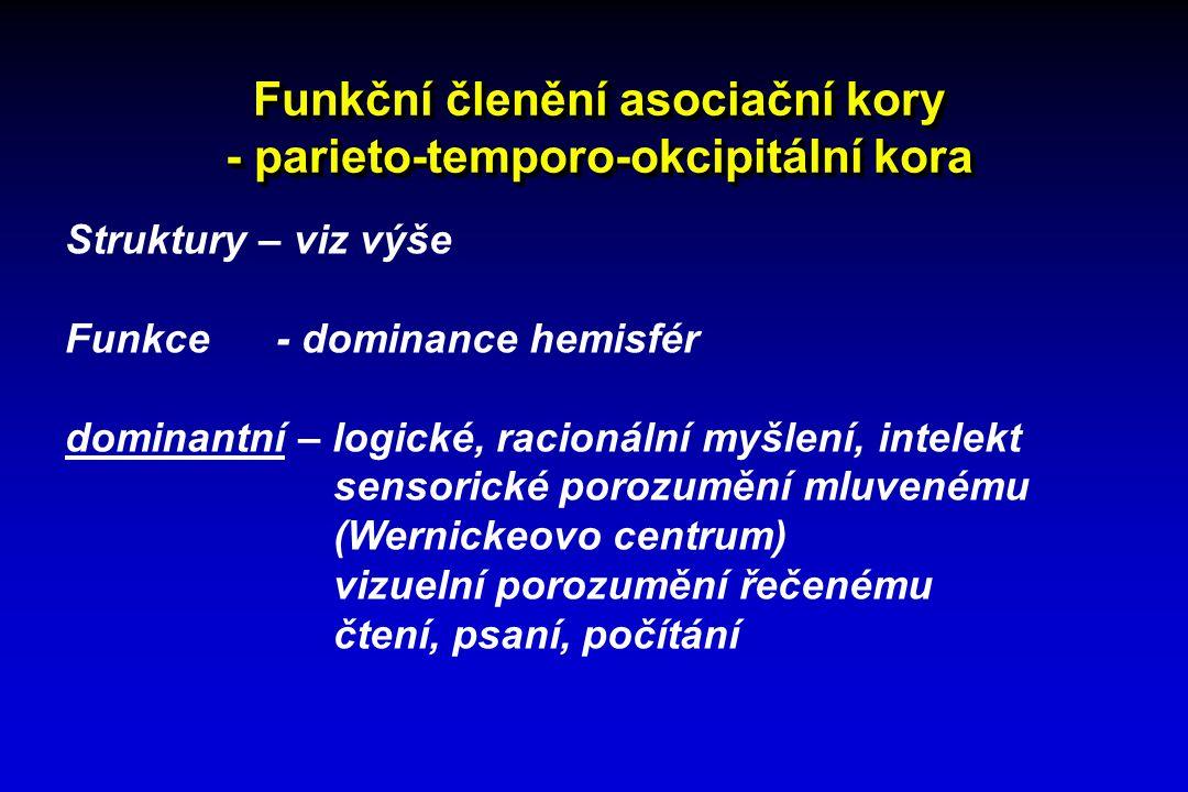 Funkční členění asociační kory - parieto-temporo-okcipitální kora