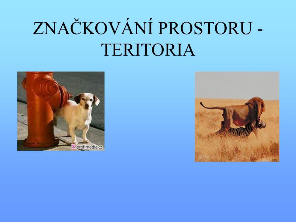 ZNAČKOVÁNÍ PROSTORU - TERITORIA
