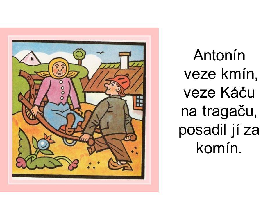 Antonín veze kmín, veze Káču na tragaču, posadil jí za komín.