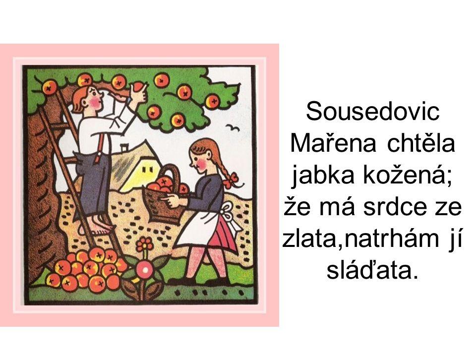 Sousedovic Mařena chtěla jabka kožená; že má srdce ze zlata,natrhám jí sláďata.