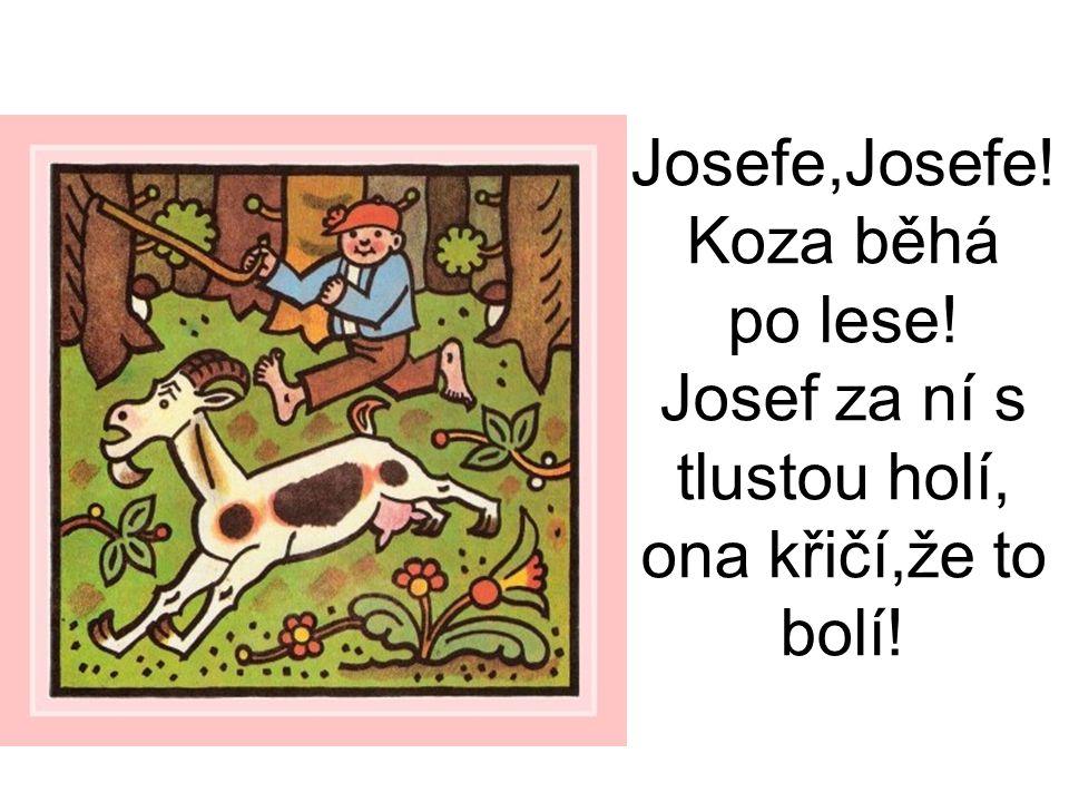Josefe,Josefe. Koza běhá po lese