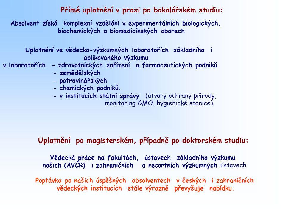 Přímé uplatnění v praxi po bakalářském studiu: