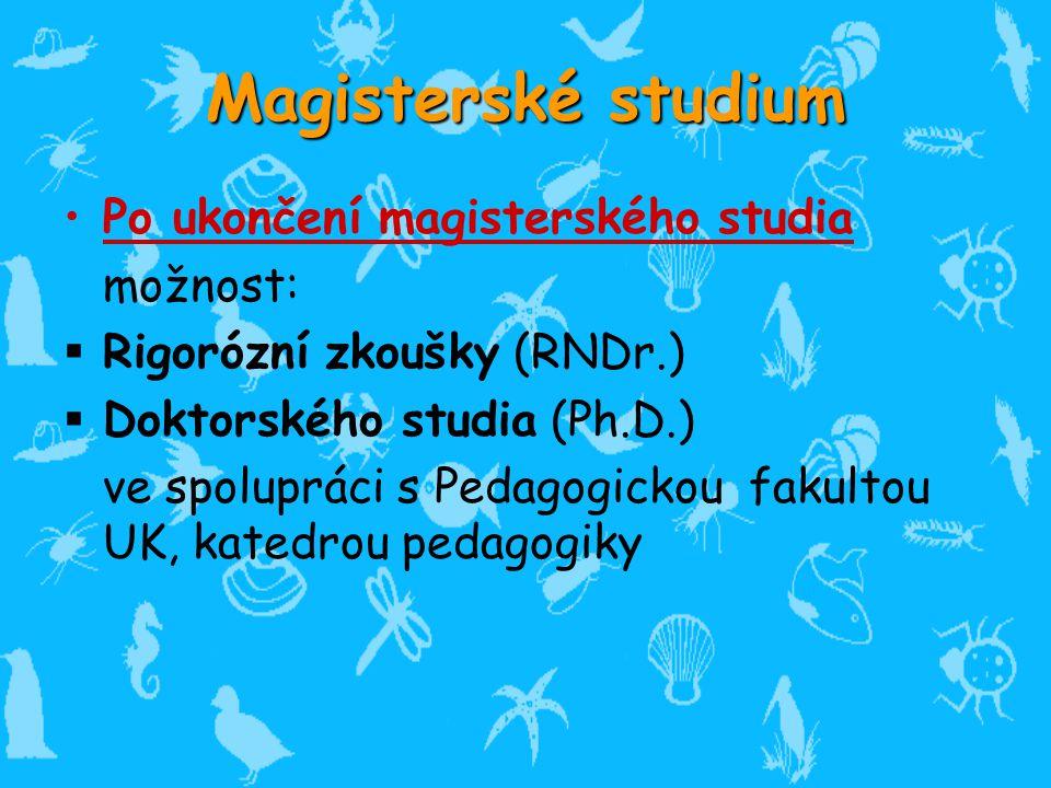 Magisterské studium Po ukončení magisterského studia možnost: