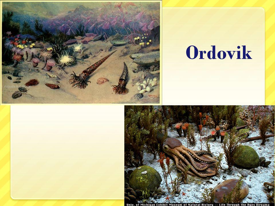 Ordovik