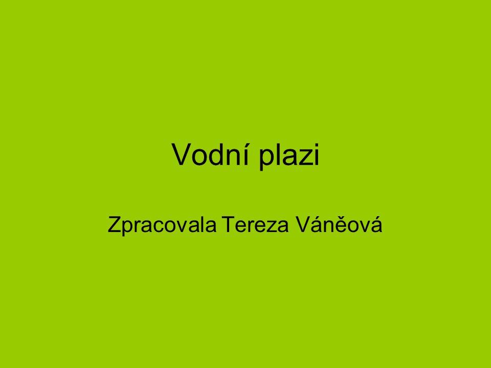 Zpracovala Tereza Váněová