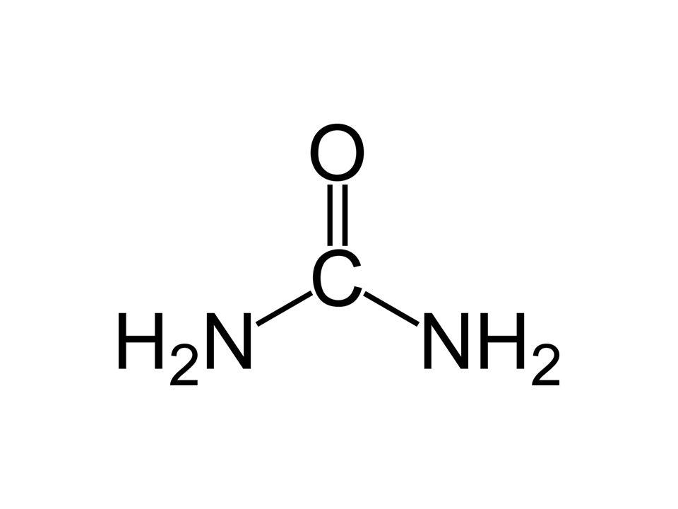 Močovina=diamid kyseliny uhličité