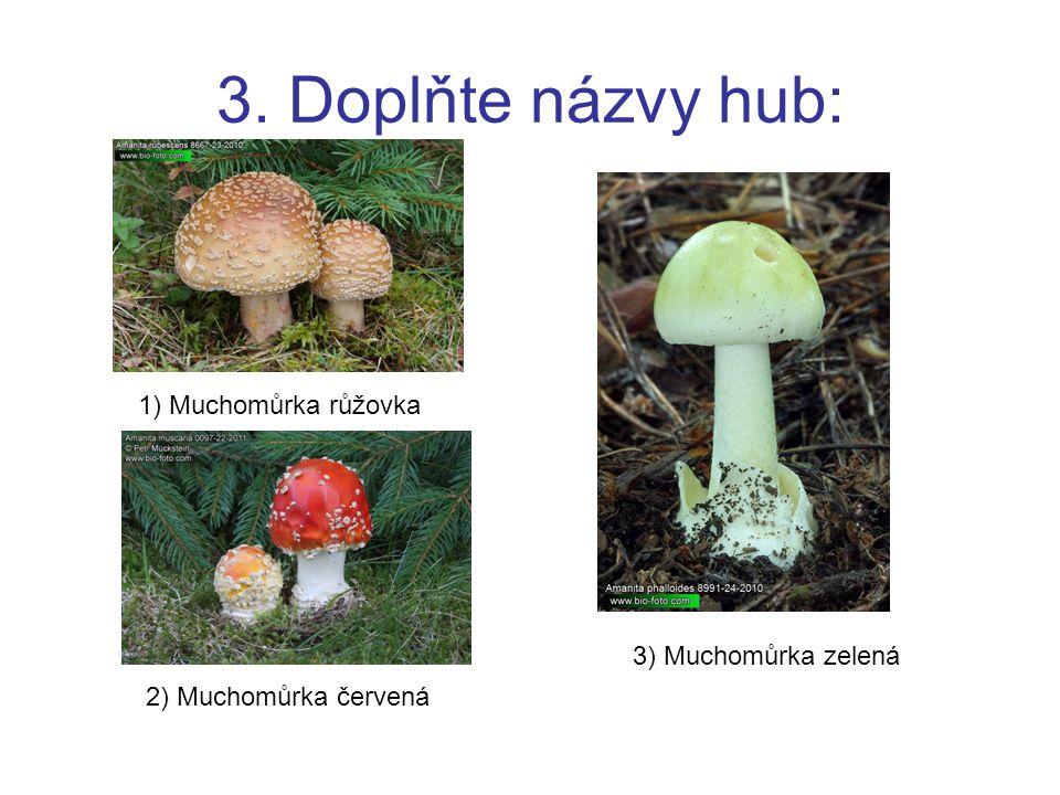 3. Doplňte názvy hub: 1) Muchomůrka růžovka 3) Muchomůrka zelená