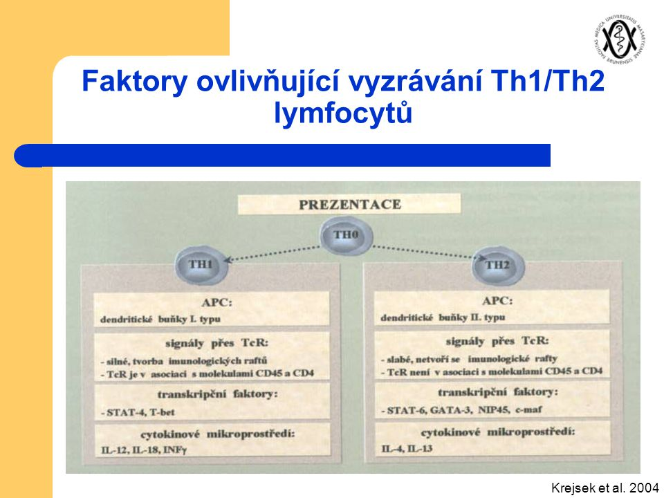 Faktory ovlivňující vyzrávání Th1/Th2 lymfocytů