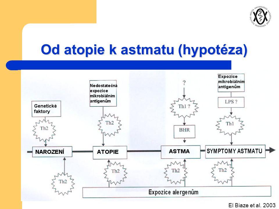 Od atopie k astmatu (hypotéza)
