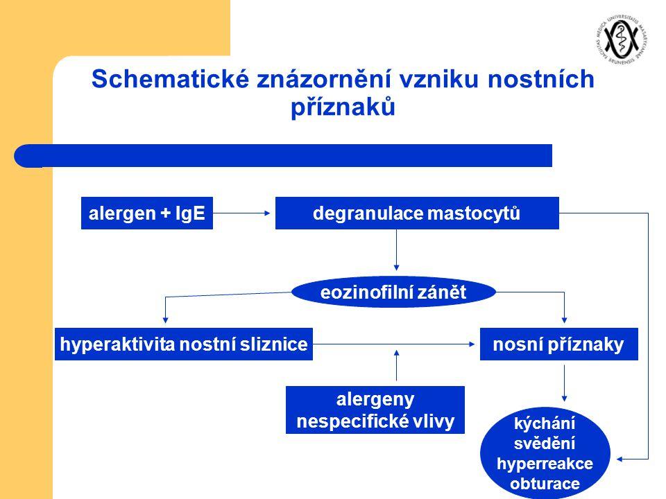 Schematické znázornění vzniku nostních příznaků