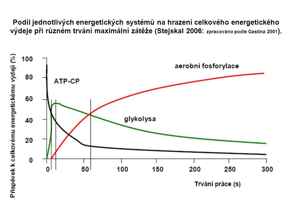 Podíl jednotlivých energetických systémů na hrazení celkového energetického výdeje při různém trvání maximální zátěže (Stejskal 2006: zpracováno podle Gastina 2001).