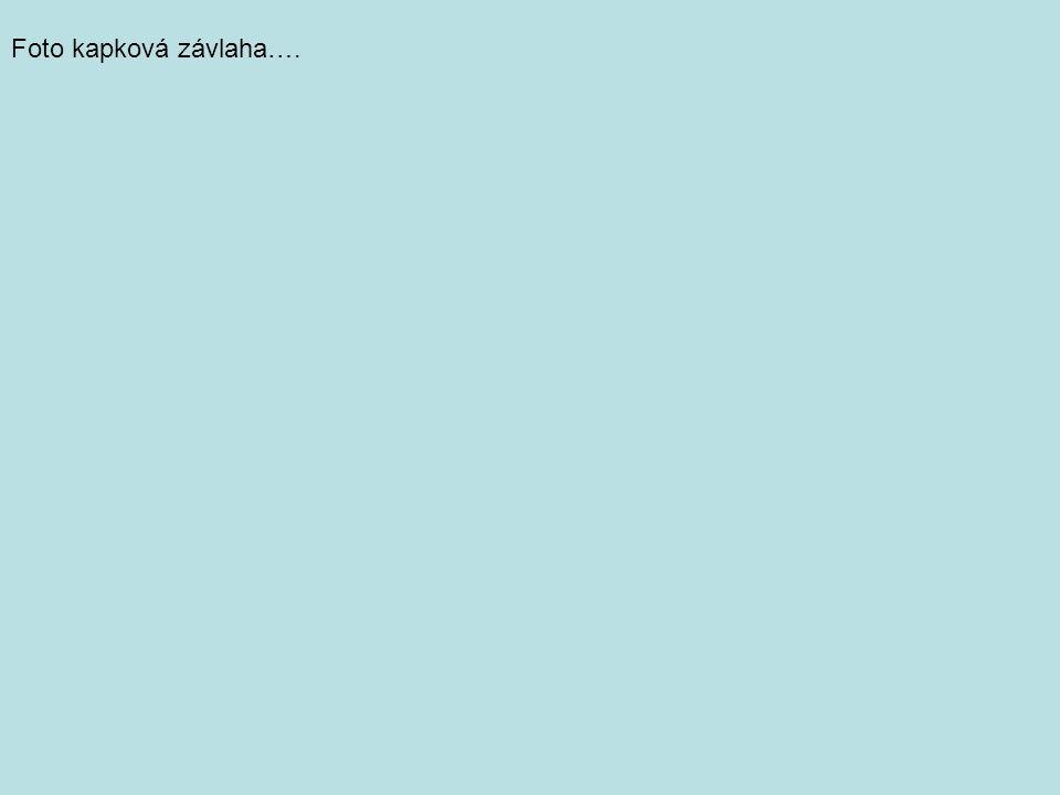 Foto kapková závlaha….