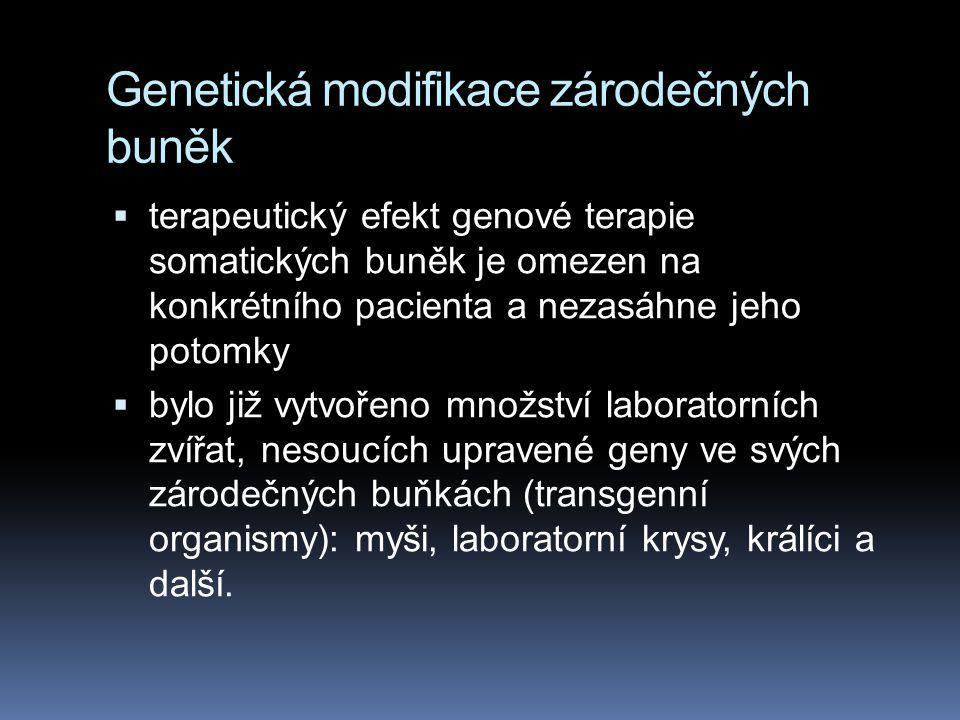 Genetická modifikace zárodečných buněk