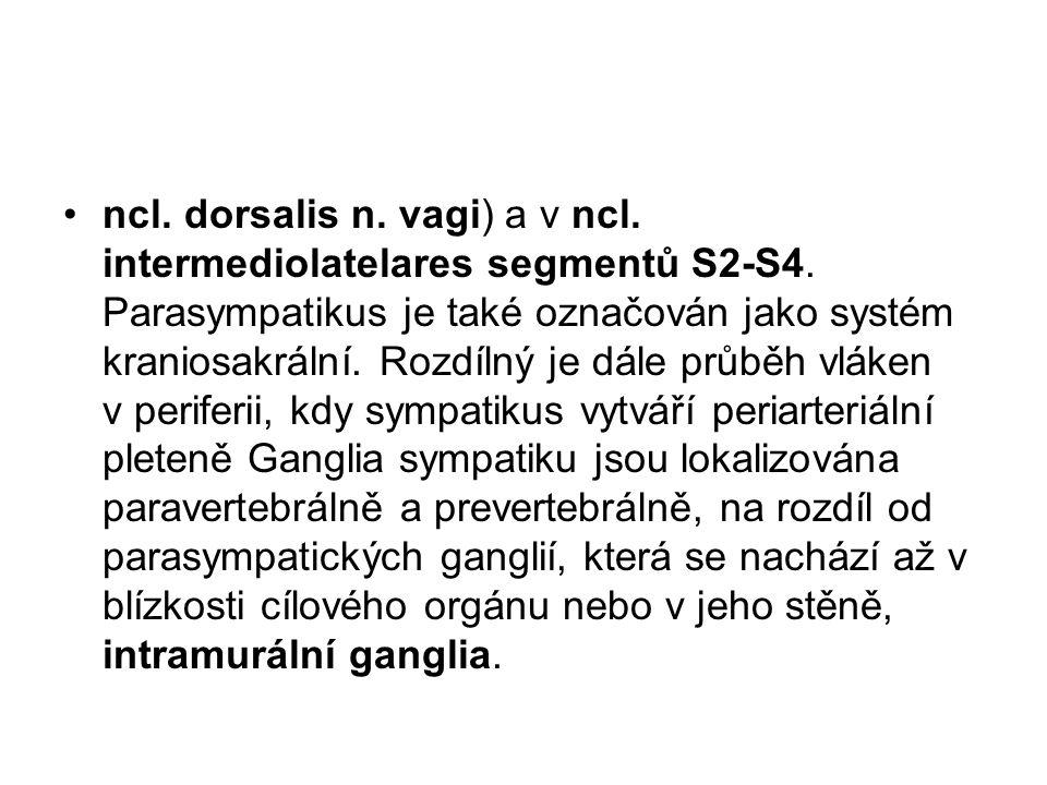 ncl. dorsalis n. vagi) a v ncl. intermediolatelares segmentů S2-S4