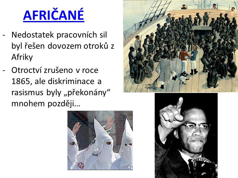 AFRIČANÉ Nedostatek pracovních sil byl řešen dovozem otroků z Afriky
