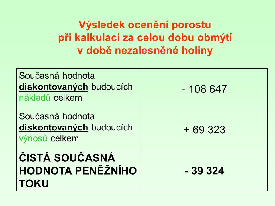 ČISTÁ SOUČASNÁ HODNOTA PENĚŽNÍHO TOKU - 39 324