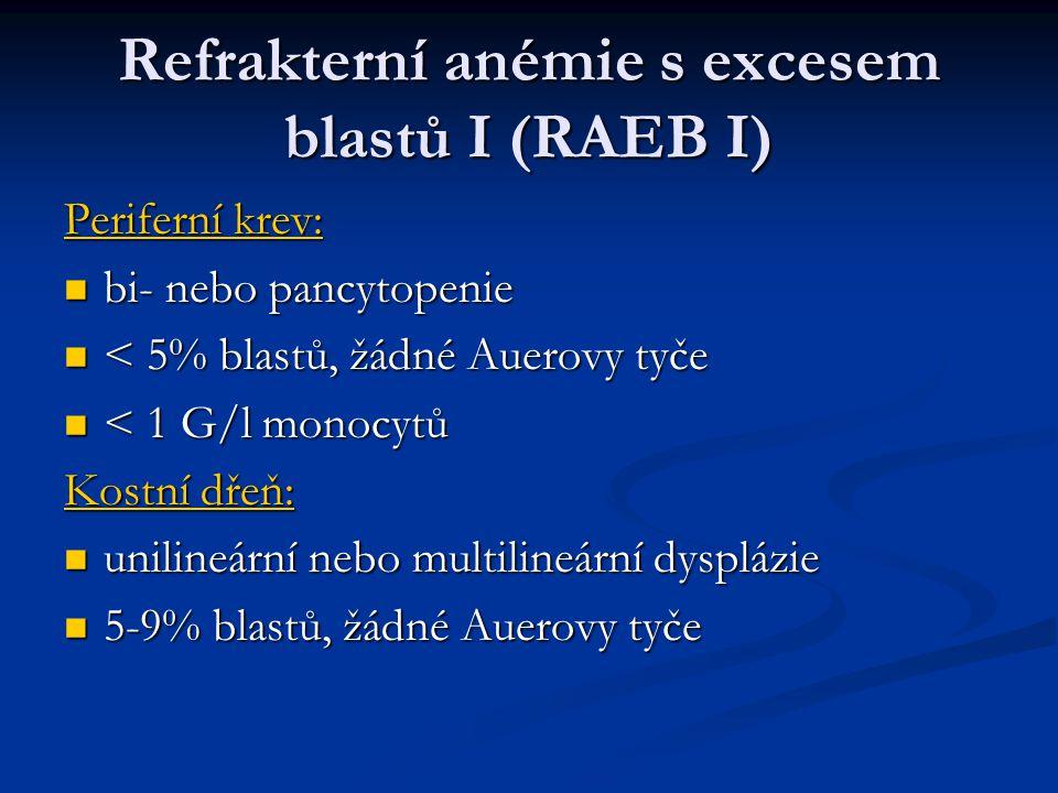 Refrakterní anémie s excesem blastů I (RAEB I)