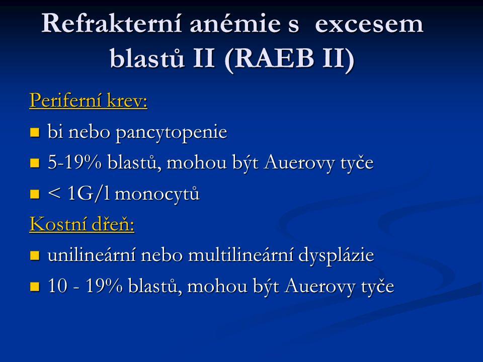 Refrakterní anémie s excesem blastů II (RAEB II)