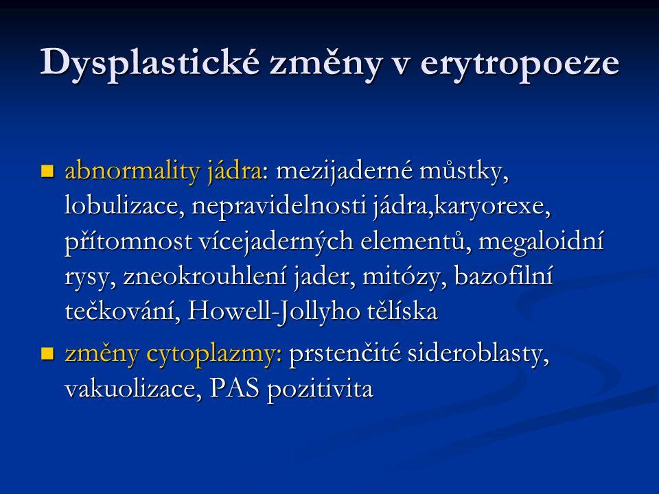 Dysplastické změny v erytropoeze