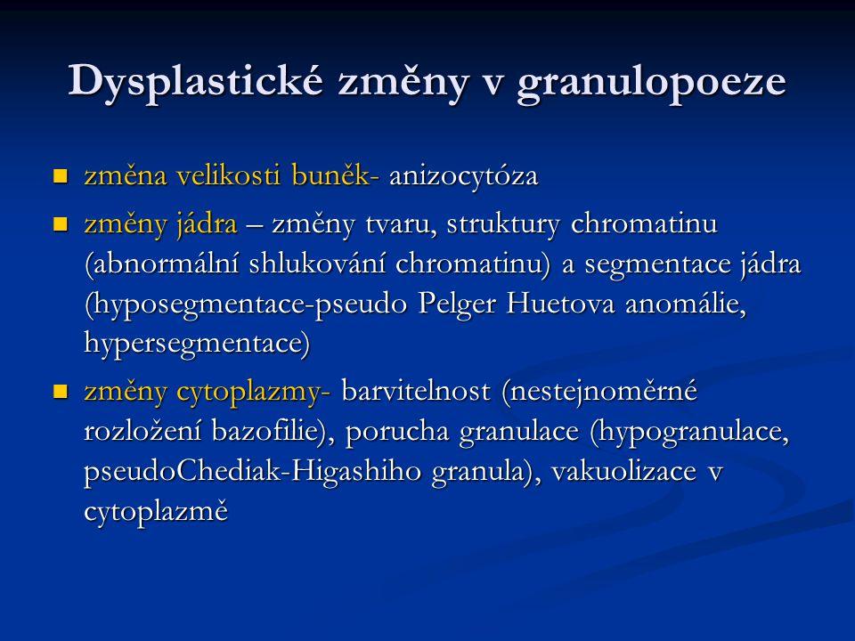 Dysplastické změny v granulopoeze
