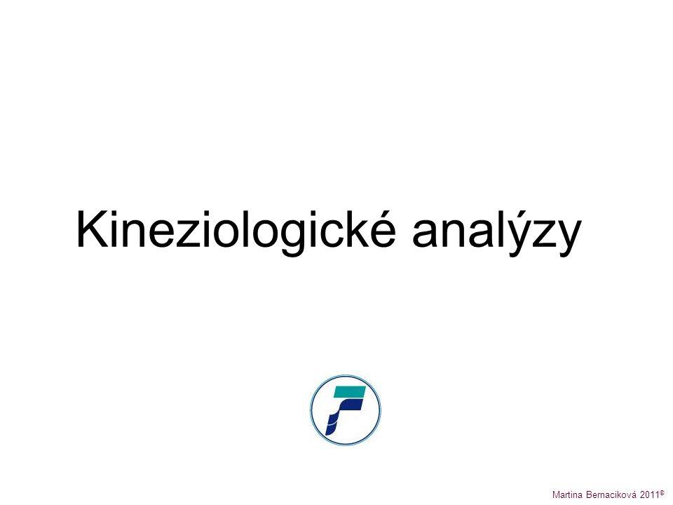 Kineziologické analýzy