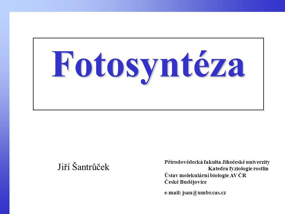 Fotosyntéza Jiří Šantrůček Přírodovědecká fakulta Jihočeské univerzity