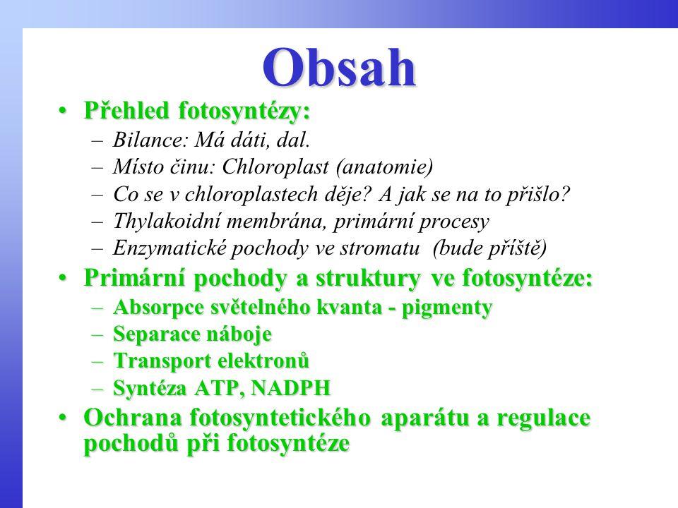 Obsah Přehled fotosyntézy: