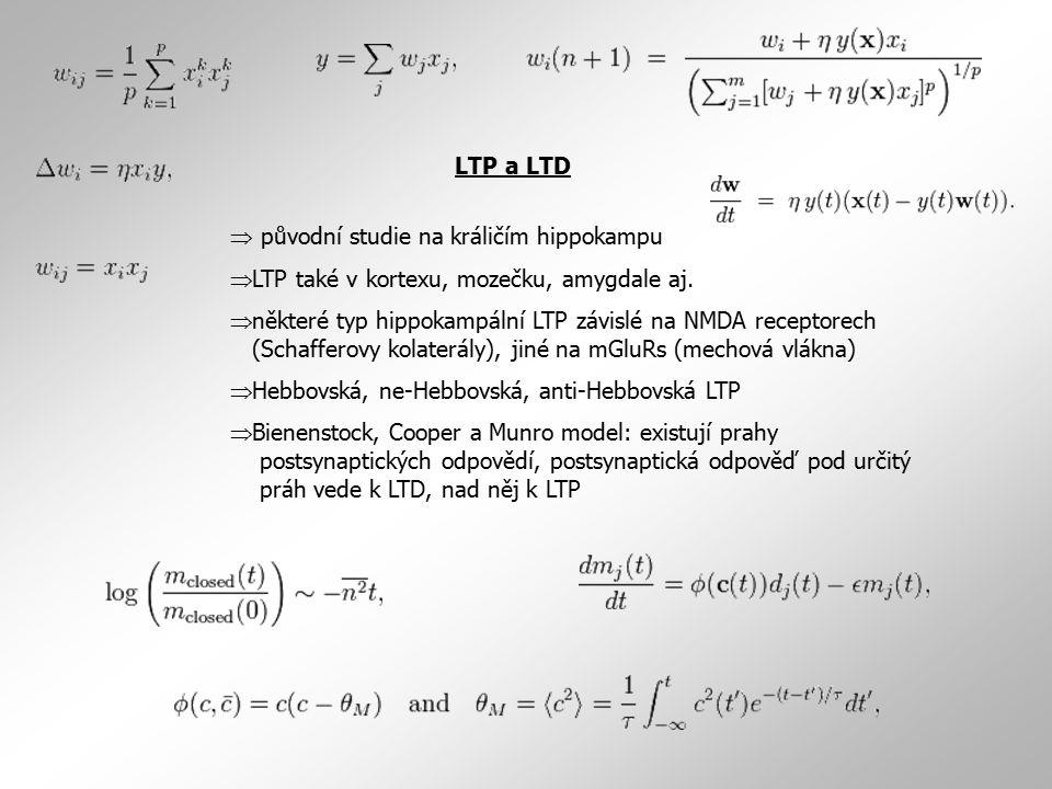 LTP a LTD  původní studie na králičím hippokampu. LTP také v kortexu, mozečku, amygdale aj.