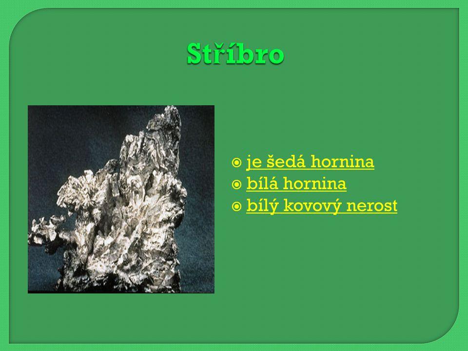 Stříbro je šedá hornina bílá hornina bílý kovový nerost