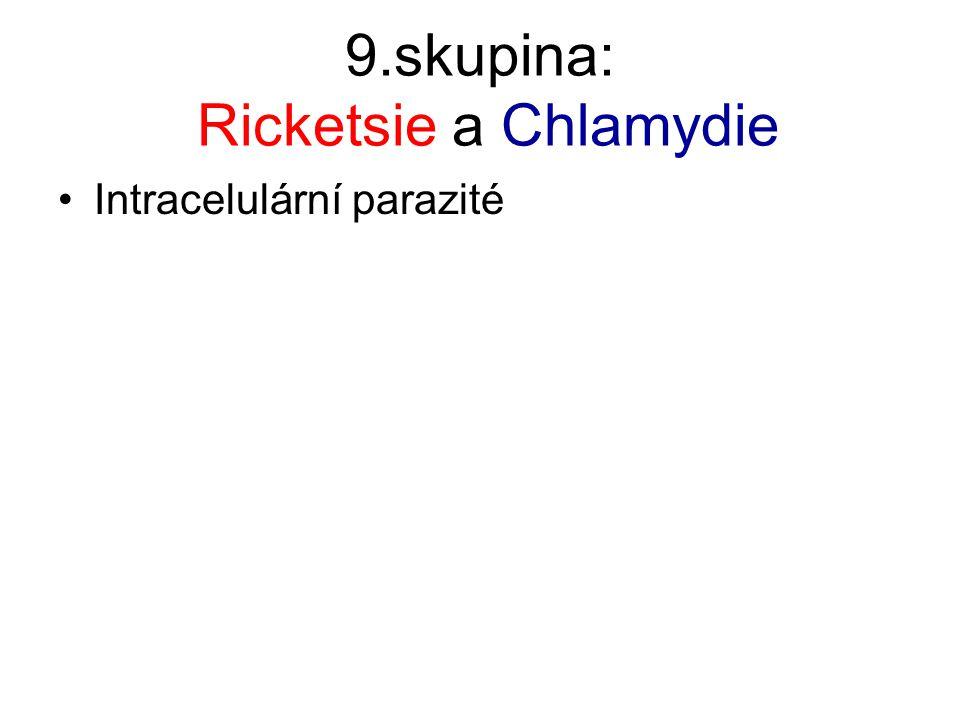 9.skupina: Ricketsie a Chlamydie