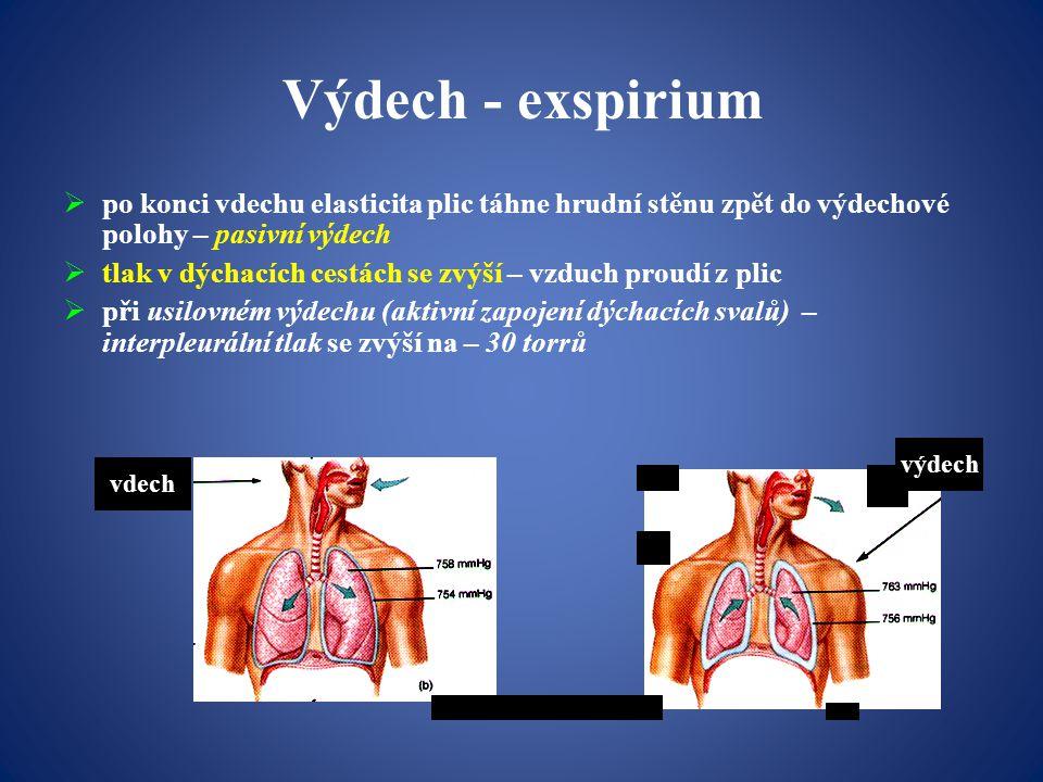 Výdech - exspirium po konci vdechu elasticita plic táhne hrudní stěnu zpět do výdechové polohy – pasivní výdech.