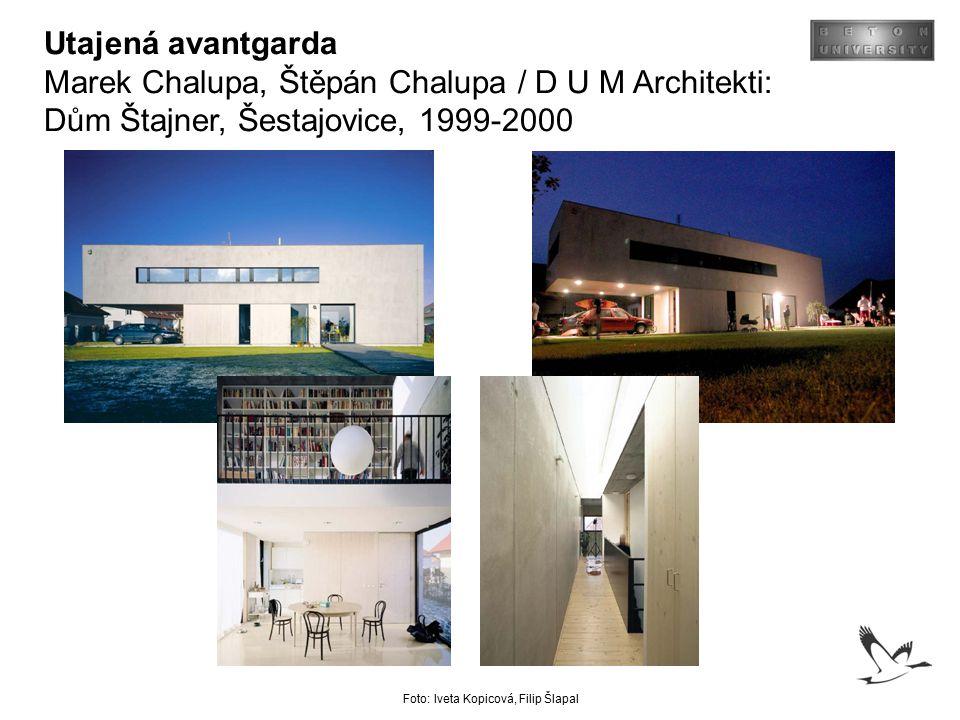 Utajená avantgarda Marek Chalupa, Štěpán Chalupa / D U M Architekti: Dům Štajner, Šestajovice, 1999-2000.