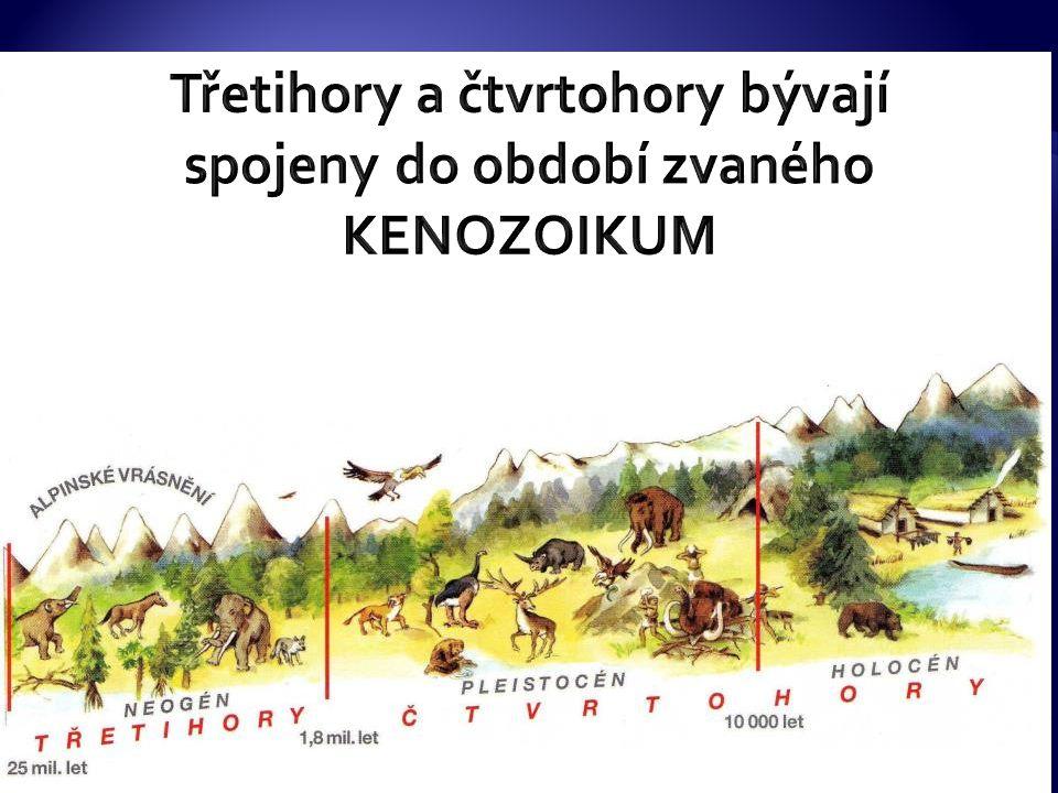 Třetihory a čtvrtohory bývají spojeny do období zvaného KENOZOIKUM