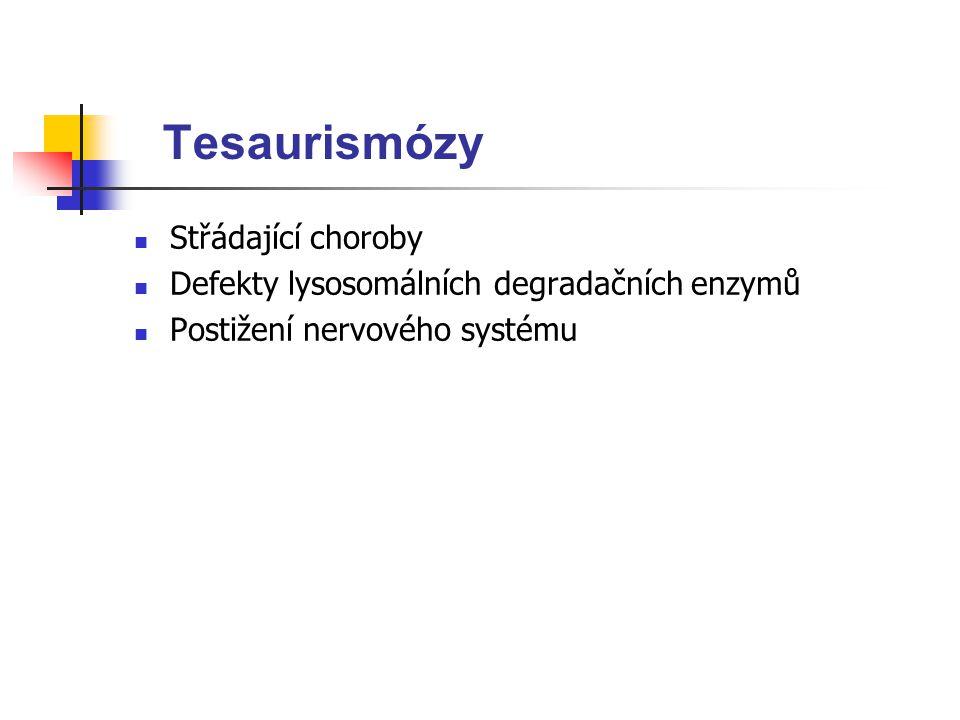 Tesaurismózy Střádající choroby