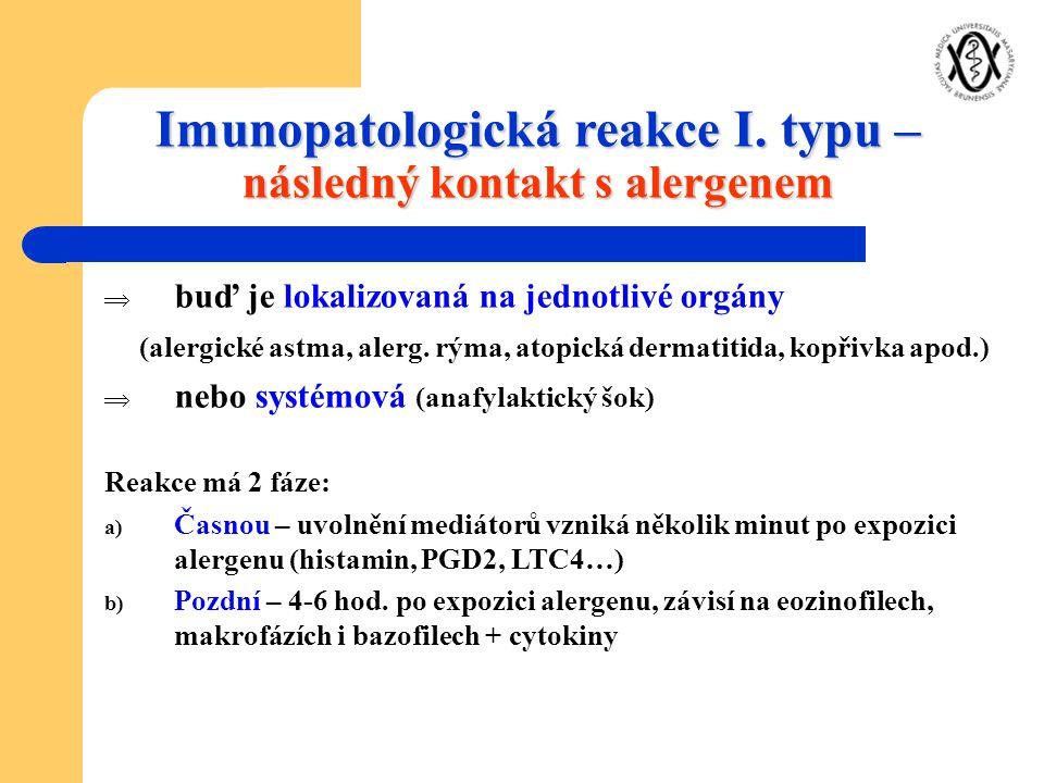 Imunopatologická reakce I. typu – následný kontakt s alergenem